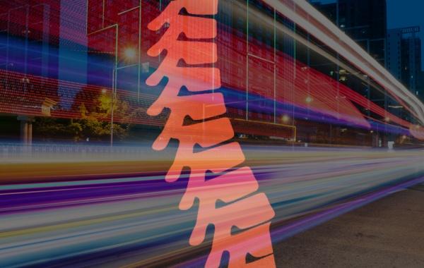 NETWORKING | La Spina Dorsale